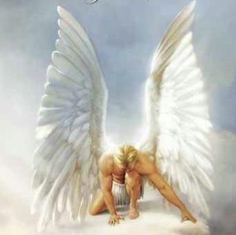 AngelMale
