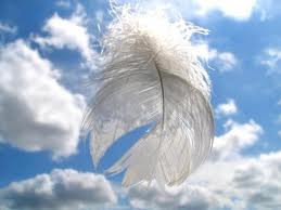 AngelFeather
