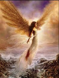 angel27