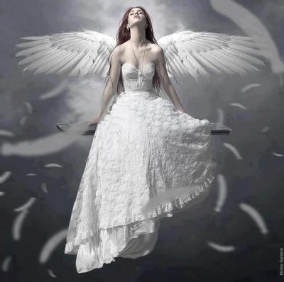 Angel60