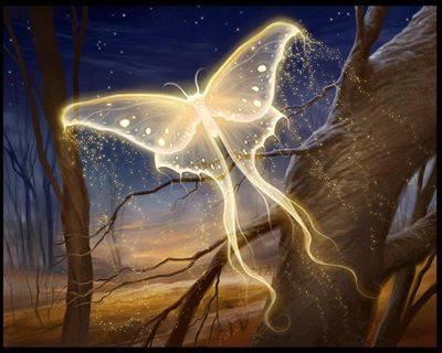 ButterflyLightBeing