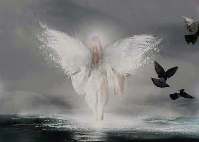 Angel2a